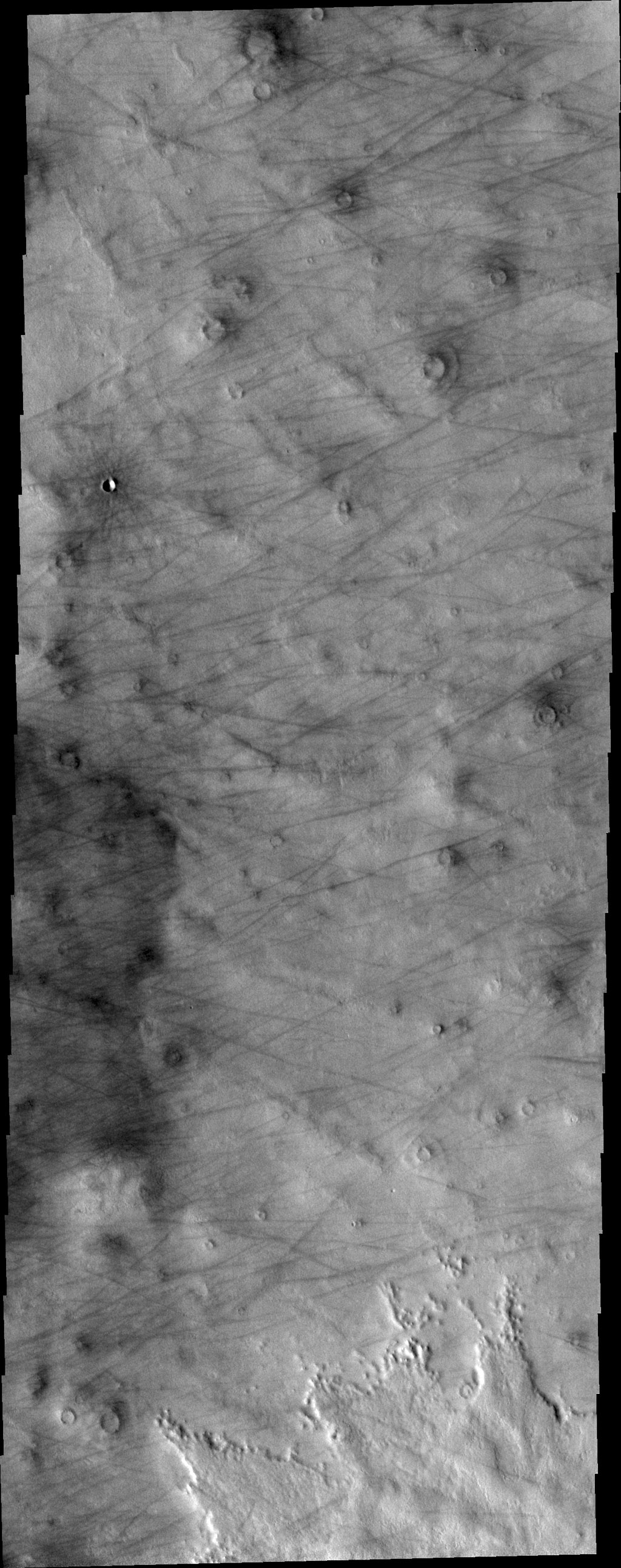 This image from NASA's 2001 Mars Odyssey spacecraft of Daedalia Planum shows the termination or end of a single flow. In this case it is the end of the brighter/rougher flow on the right side of the image.