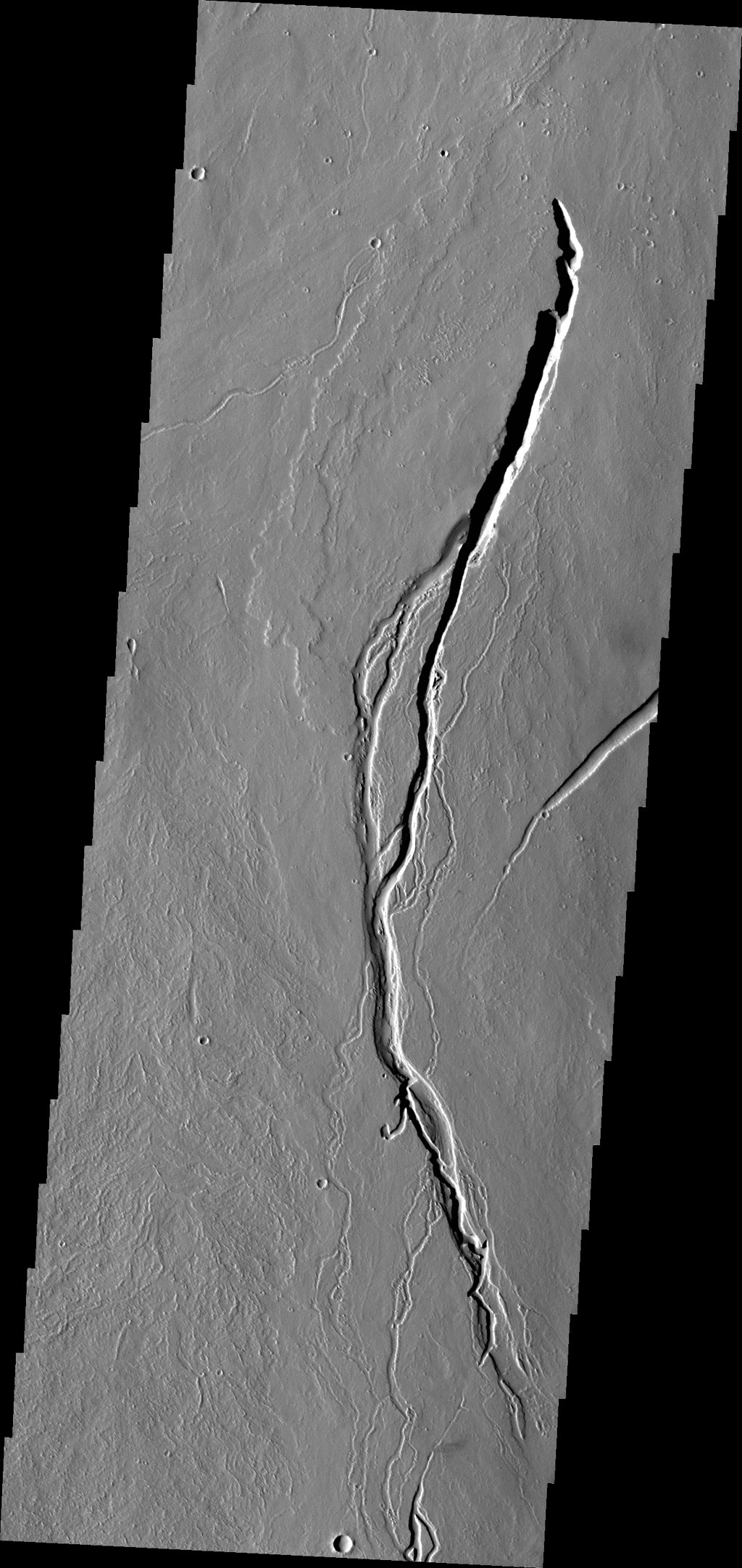 The lava channels in this image from NASA's 2001 Mars Odyssey spacecraft are located on the southern flank of Ascraeus Mons.