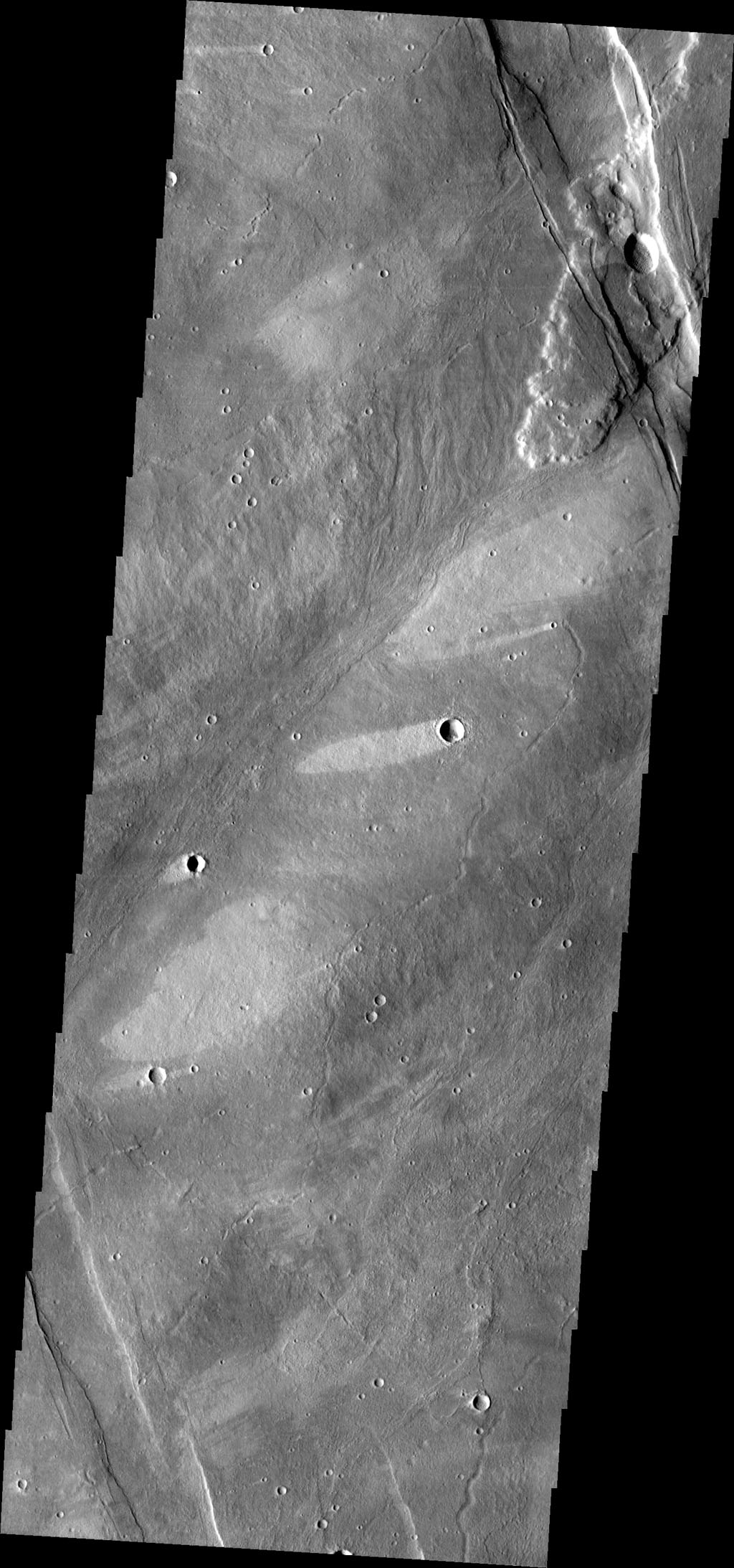 The windstreaks in this image from NASA's 2001 Mars Odyssey spacecraft are located on the southwestern flank of Alba Mons.