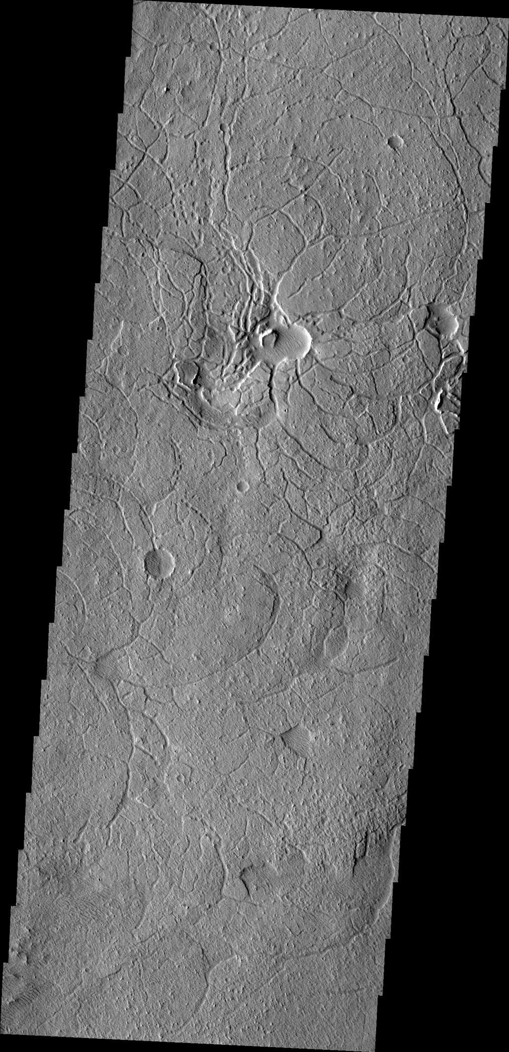 This region of arcuate (or curved) fractures is located north of Apollinaris Mons as seen by NASA's 2001 Mars Odyssey spacecraft.