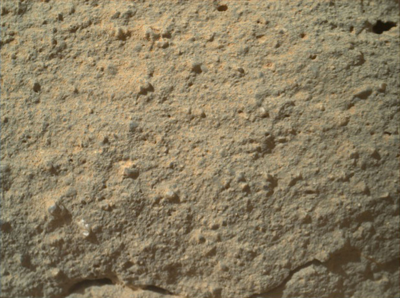 This image from NASA's Curiosity rover shows the great diversity of grains found on the surface of a Martian rock.