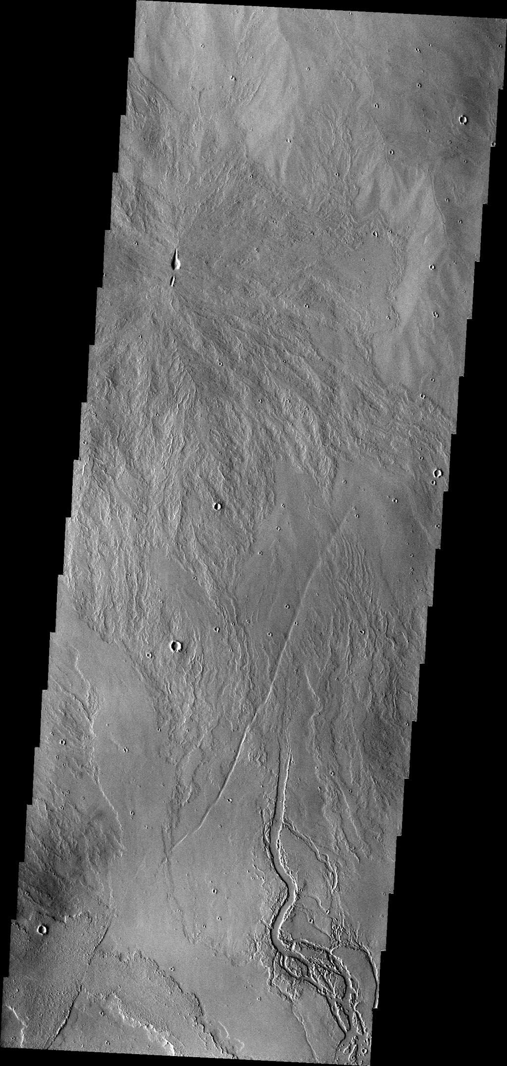 The lava channels in this image are located in the Tharsis plains as seen by NASA's 2001 Mars Odyssey spacecraft.