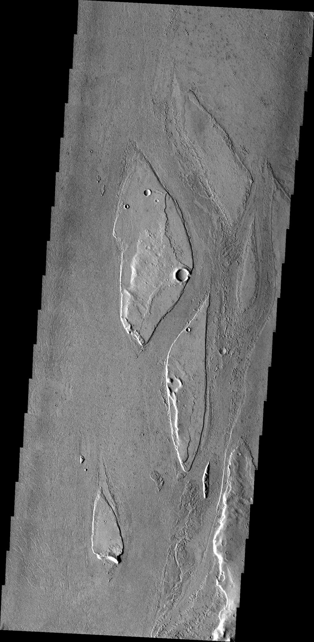 The streamlined islands in this image from NASA's 2001 Mars Odyssey spacecraft are located in the channel of Marte Vallis.
