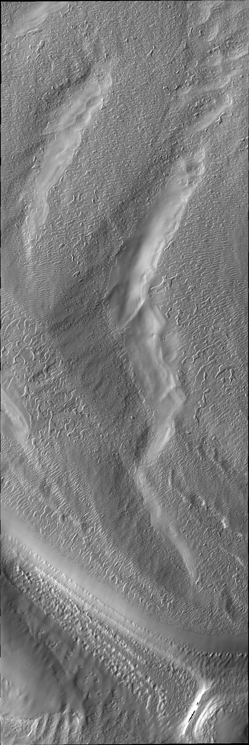 This image from NASA's 2001 Mars Odyssey spacecraft shows a region of the south pole where the surface has developed linear markings, a pattern not unlike a thumbprint.
