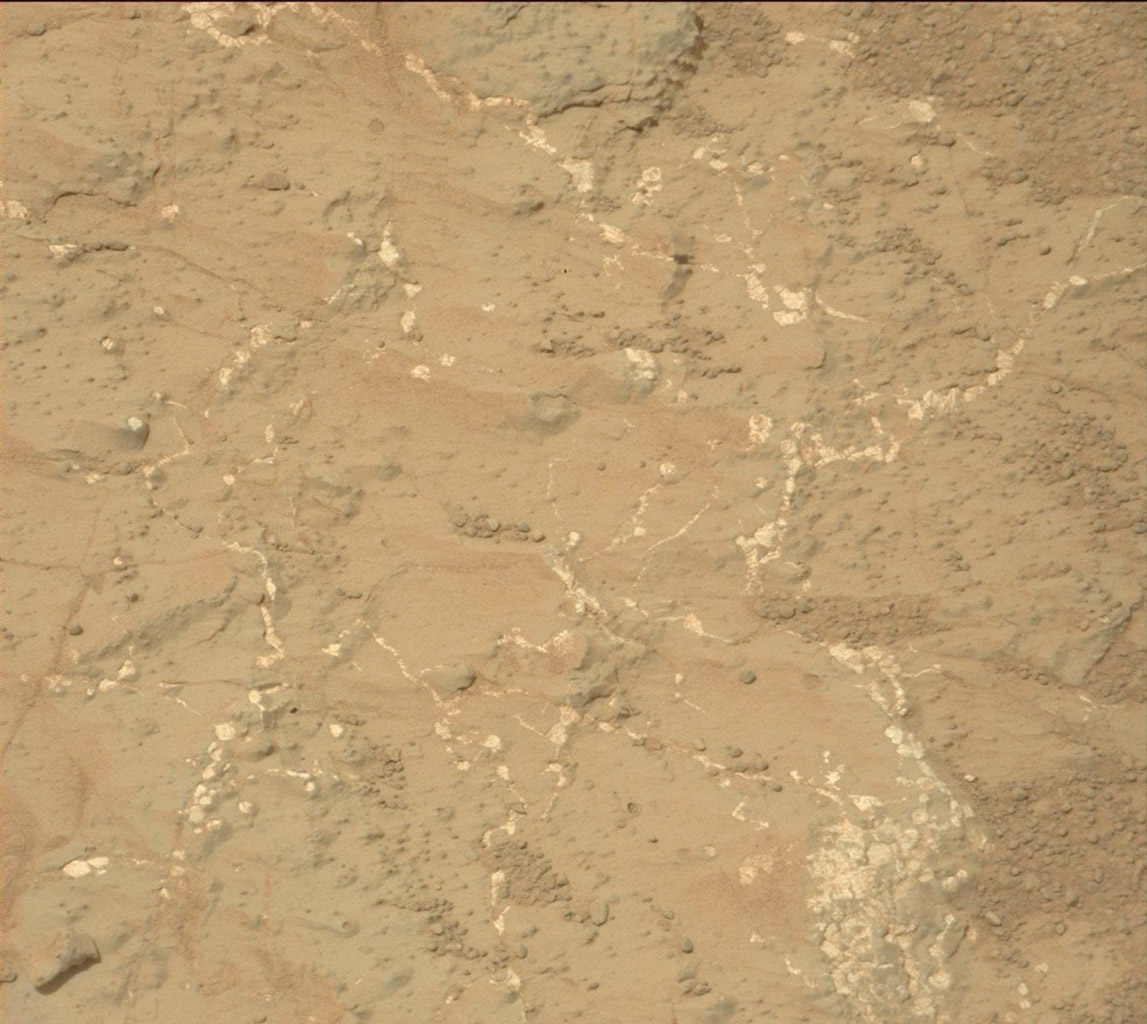 Light-toned nodules and veins of a patch of sedimentary rock called 'Knorr' are visible in this image from NASA's Mars rover Curiosity.