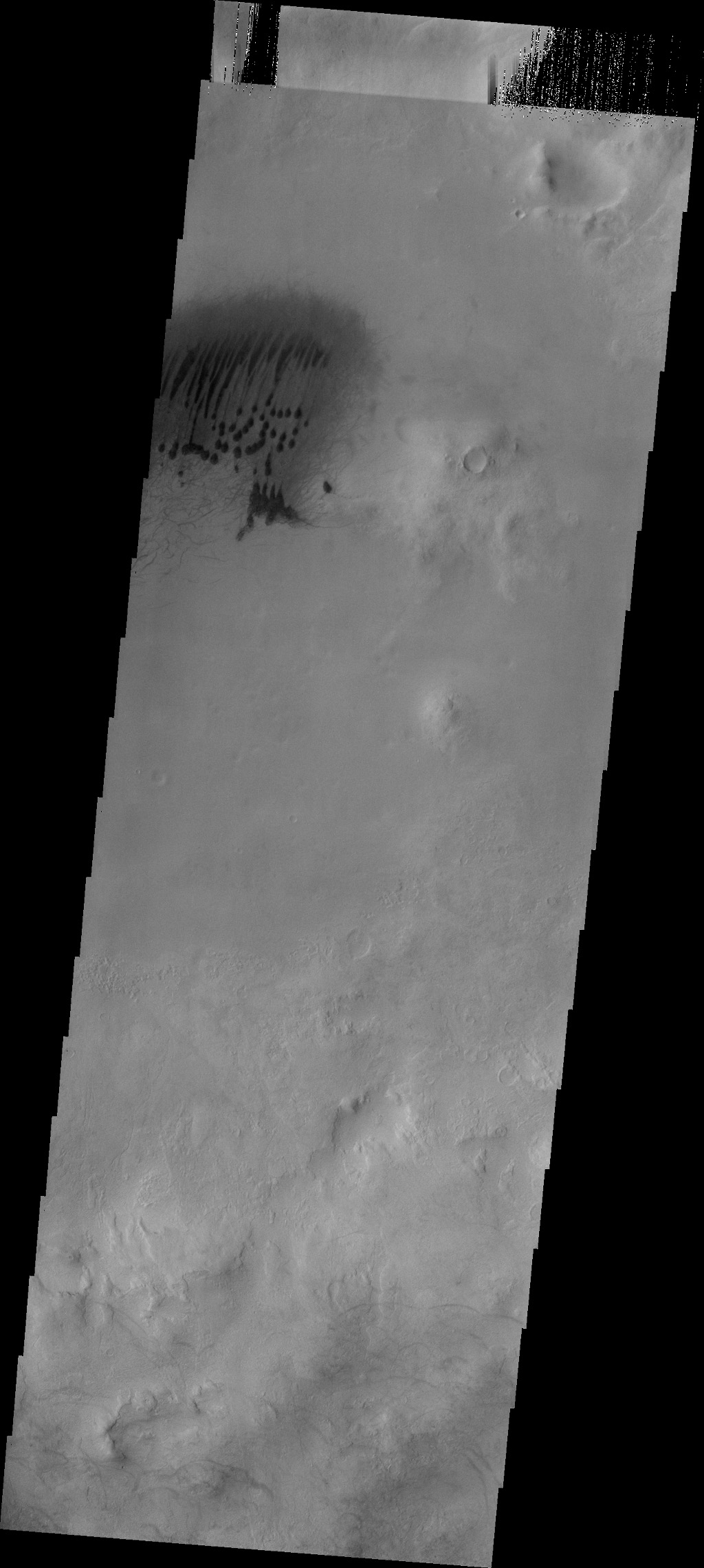This image from NASA's Mars Odyssey spacecraft shows a small field of dunes and associated dust devil tracks located on the floor of this unnamed crater on the rim of Roddenberry Crater.