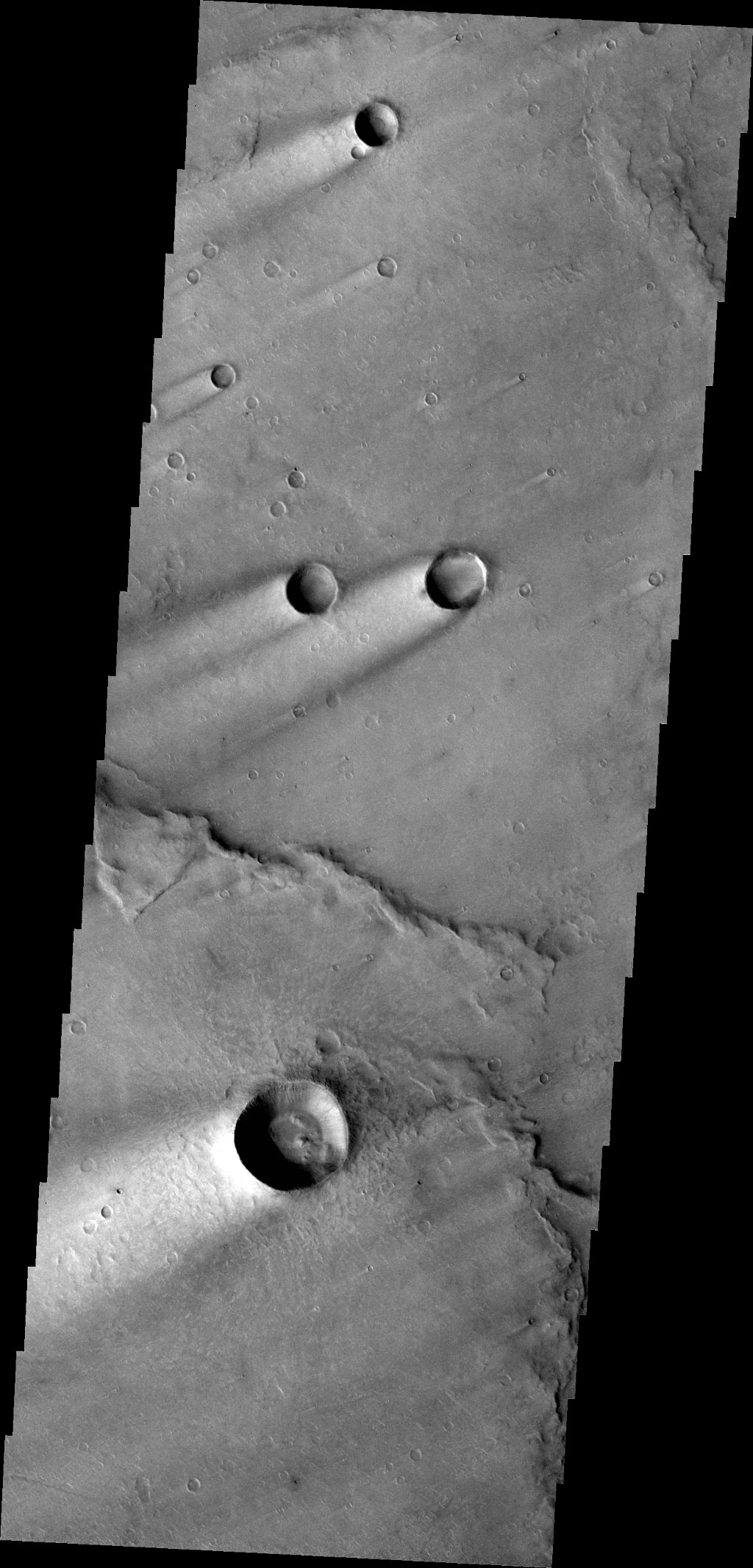 These windstreaks are located on Syrtis Major Planum, as shown in this image captured by NASA's 2001 Mars Odyssey spacecraft.