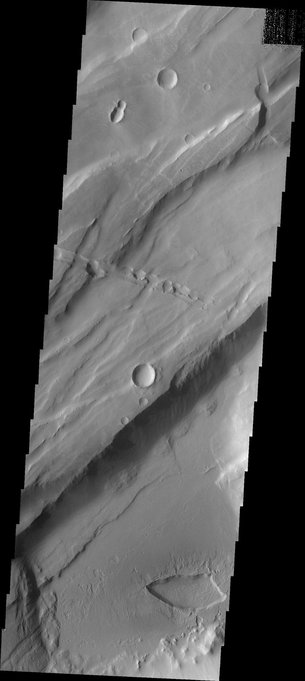 Do you see what I see in this image captured by NASA's 2001 Mars Odyssey spacecraft? Another bug!