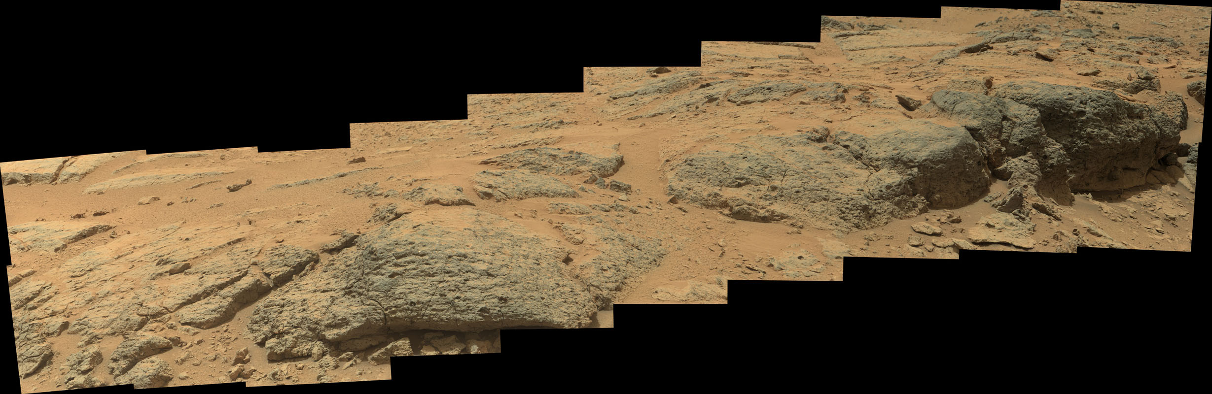 This mosaic view from the Mast Camera (Mastcam) on NASA's Mars rover Curiosity shows textural characteristics and shapes of an outcrop called 'Point Lake.' The outcrop is about 20 inches (half a meter) high and pockmarked with holes.
