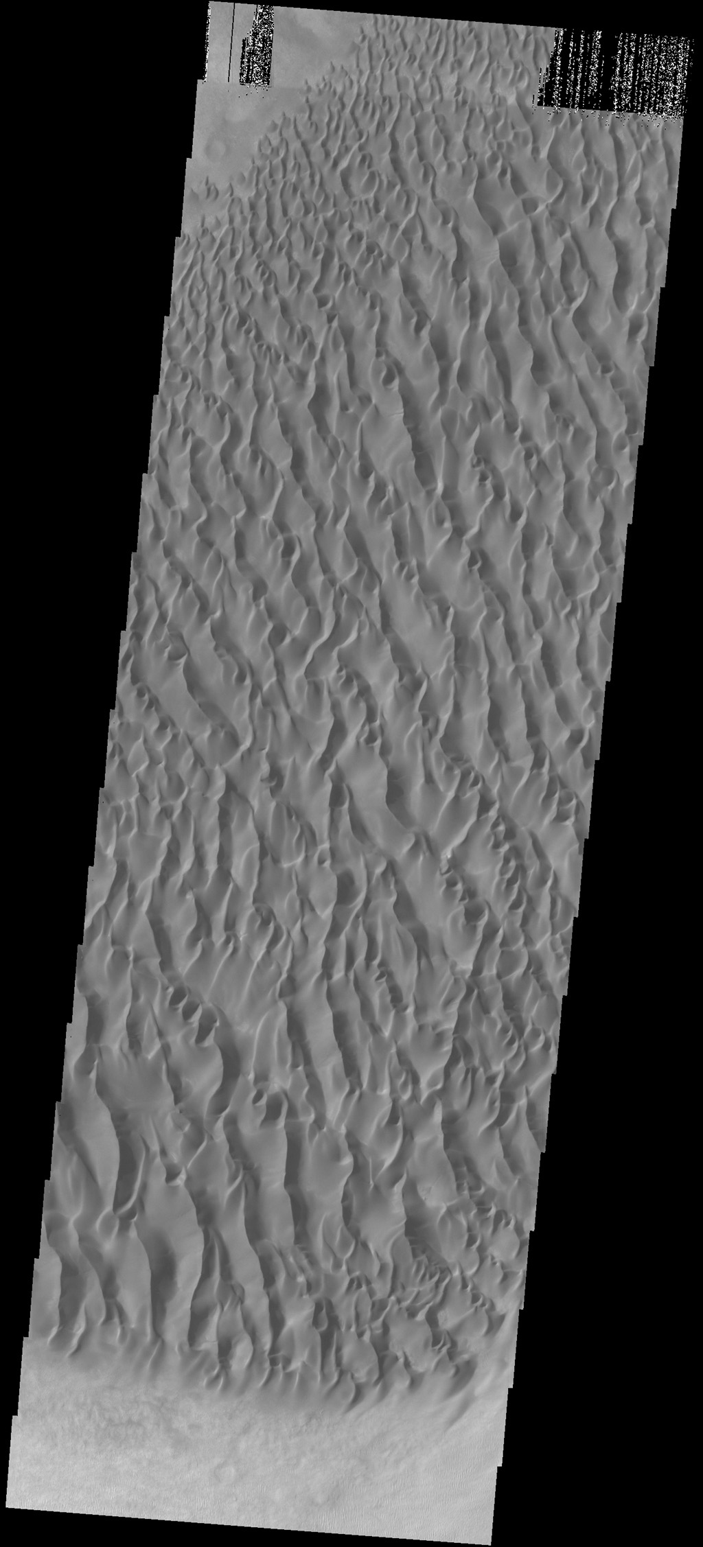 This image captured by NASA's 2001 Mars Odyssey spacecraft shows part of the large sand sheet and sand dunes on the floor of Proctor Crater.