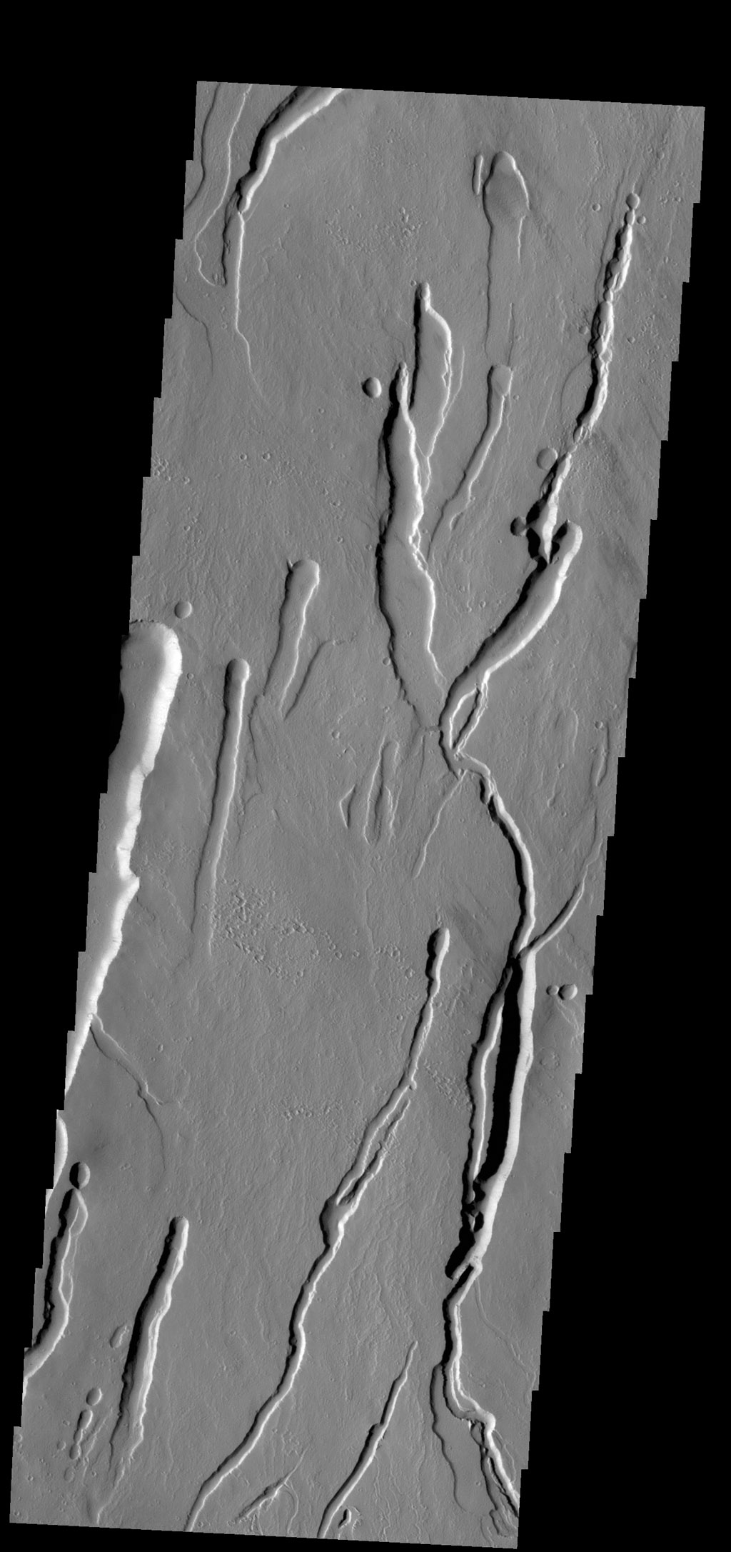 This image from NASA's 2001 Mars Odyssey spacecraf shows part of the southern flank of Ascraeus Mons. Large collapse features are common in this area.
