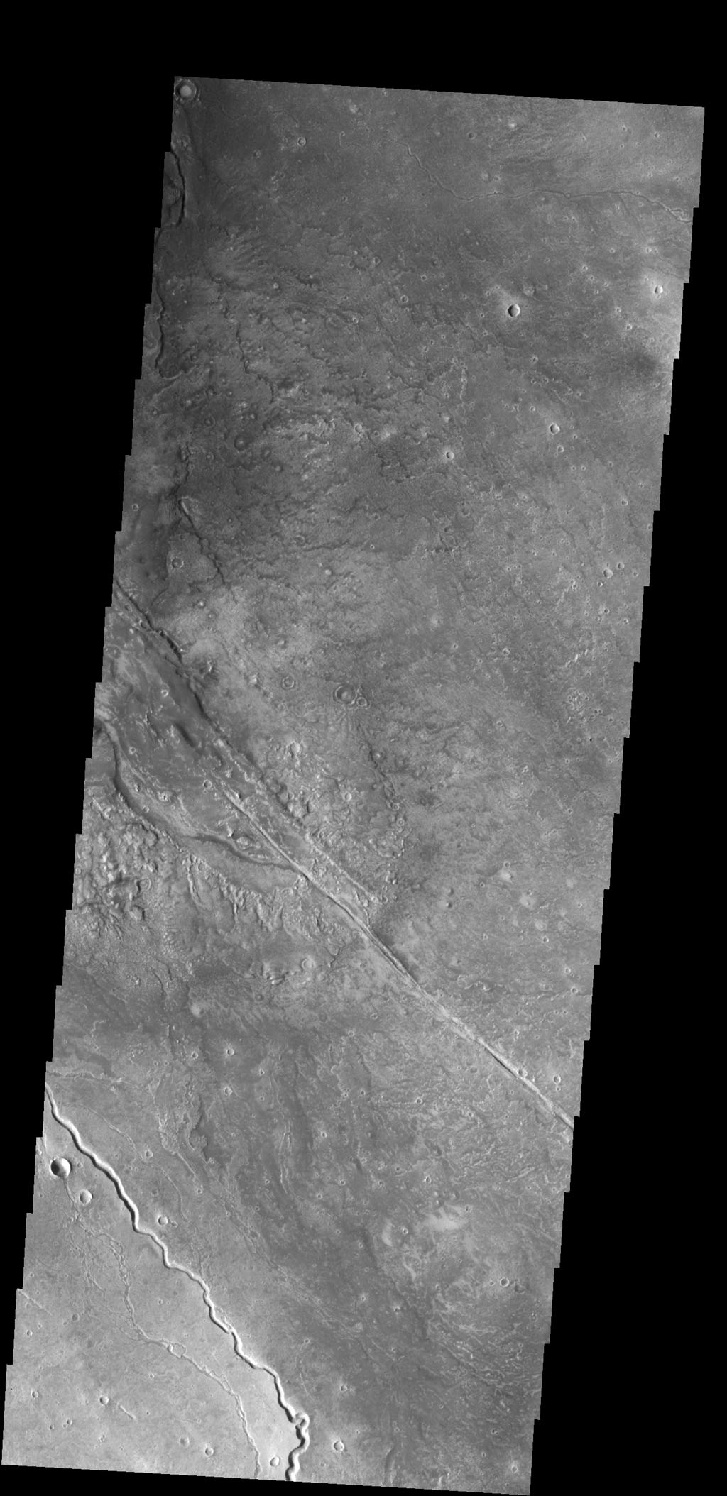 This image captured by NASA's 2001 Mars Odyssey spacecraft shows several of the channels located in the Elysium Mons volcanic complex. It is likely that these channels were formed by lava flow rather than water.