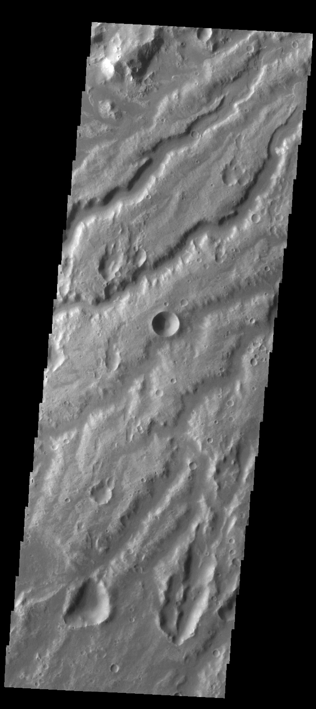 The channels in this image from NASA's 2001 Mars Odyssey spacecraft are a small portion of the channel complex called Arda Valles.