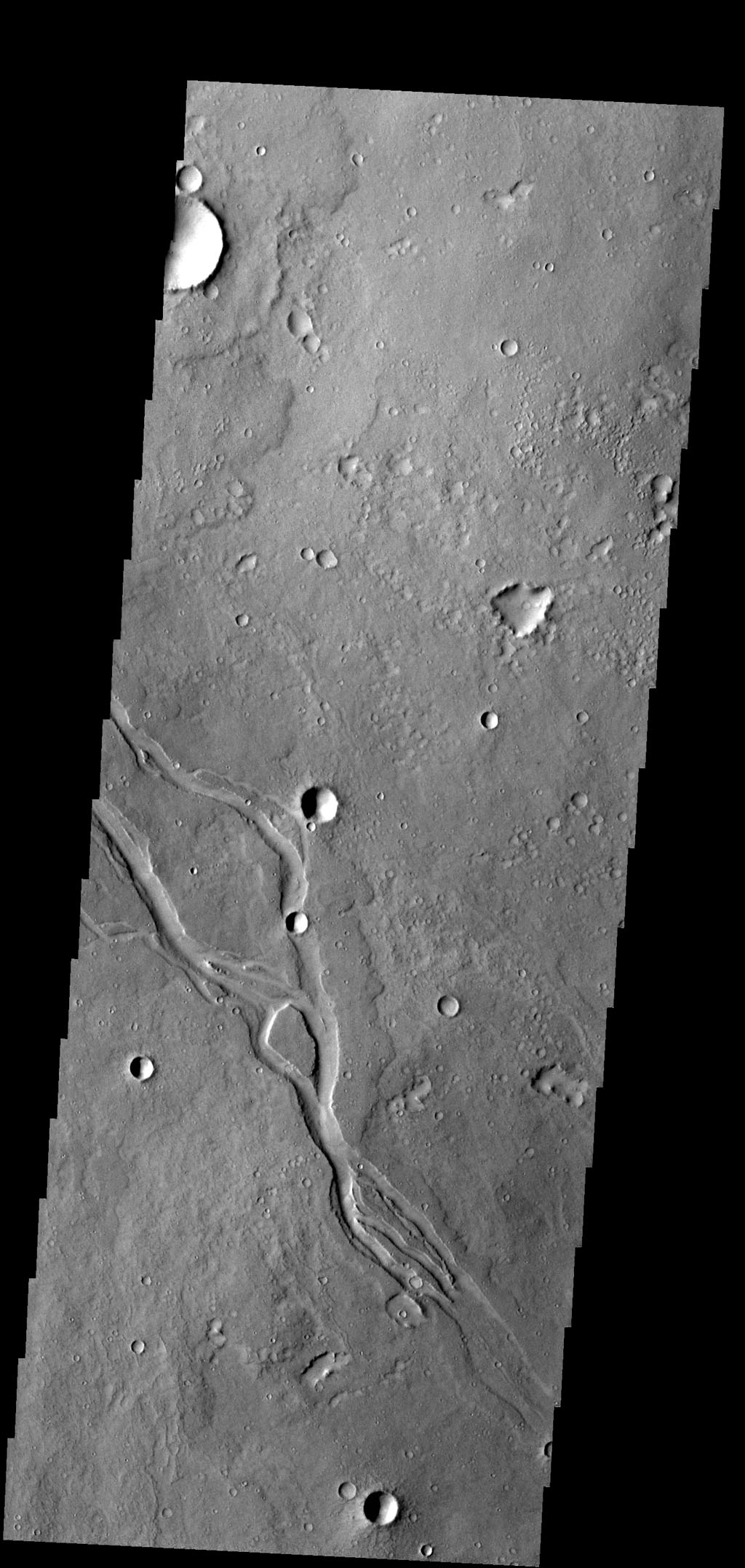 The channels in this image captured by NASA's 2001 Mars Odyssey spacecraft are located in Elysium Planitia and were likely created by lava flow.
