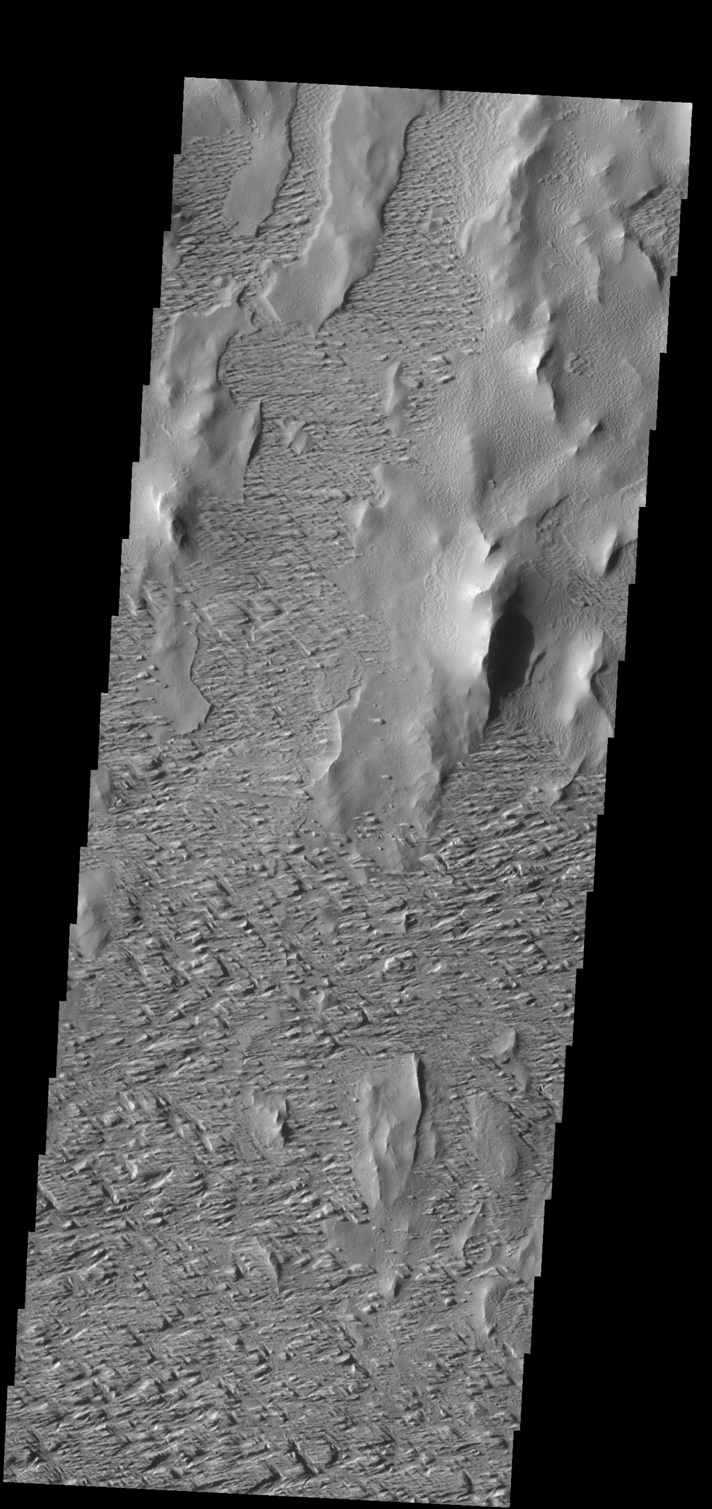 Winds have scoured this region south of Olympus Mons as seen in this image from NASA's 2001 Mars Odyssey spacecraft.