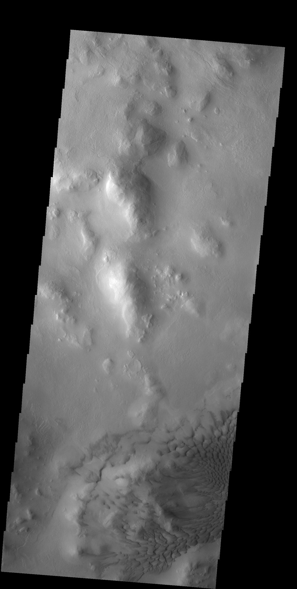The dunes in this image captured by NASA's 2001 Mars Odyssey spacecraft are located on the floor of Lyot Crater.