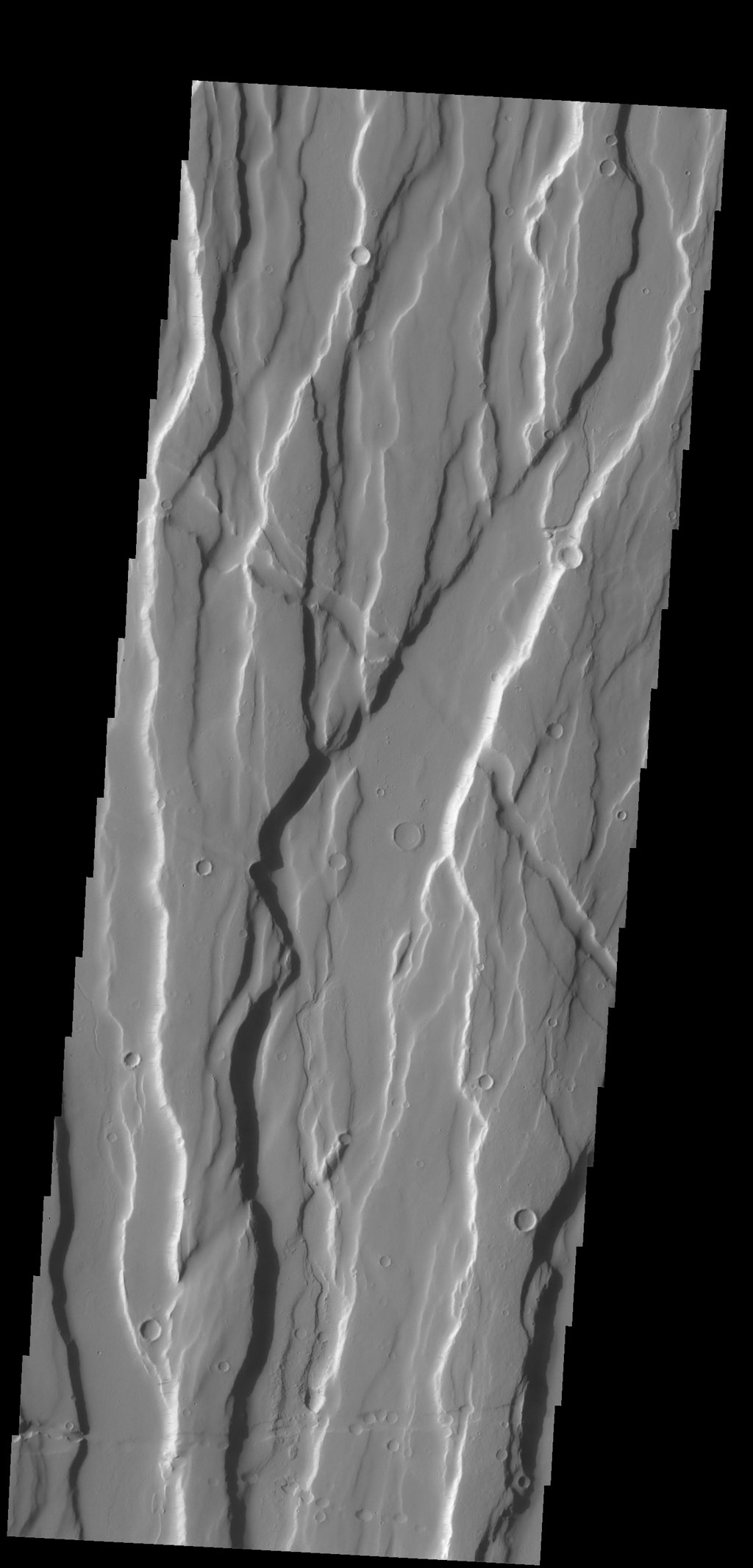 The complex fracture system in this image is part of Ceraunius Fossae, one of the fracture systems that surround Alba Mons as seen by NASA's 2001 Mars Odyssey spacecraft.