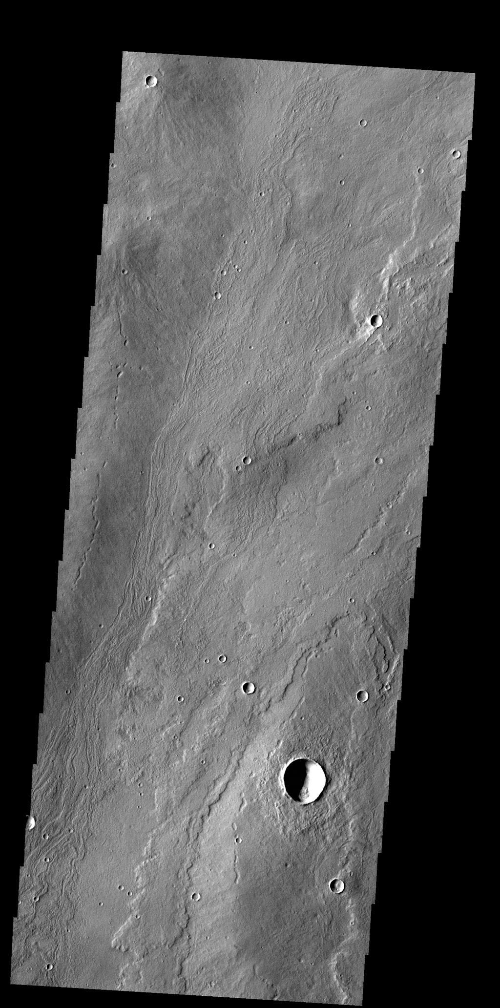 The flows in this image captured by NASA's 2001 Mars Odyssey spacecraft originated at Alba Mons.