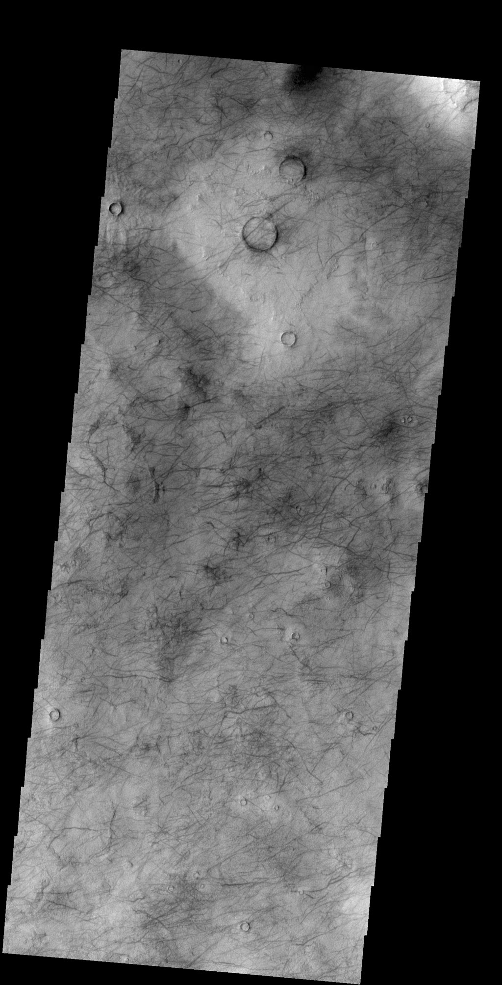 Looking at yet another portion of Utopia Planitia, NASA's 2001 Mars Odyssey spacecraft still find hundreds of dust devil tracks.