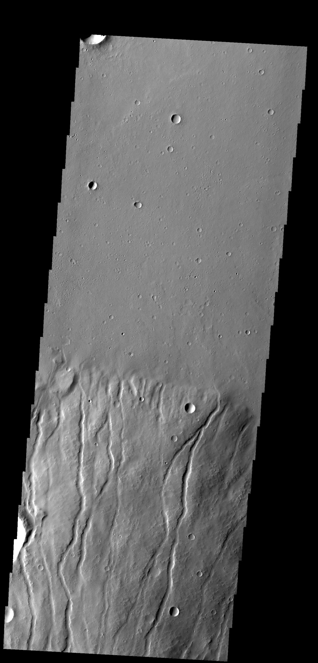 Multiple channels dissect the northern flank of Ceraunius Tholus in this image captured by NASA's 2001 Mars Odyssey spacecraft.