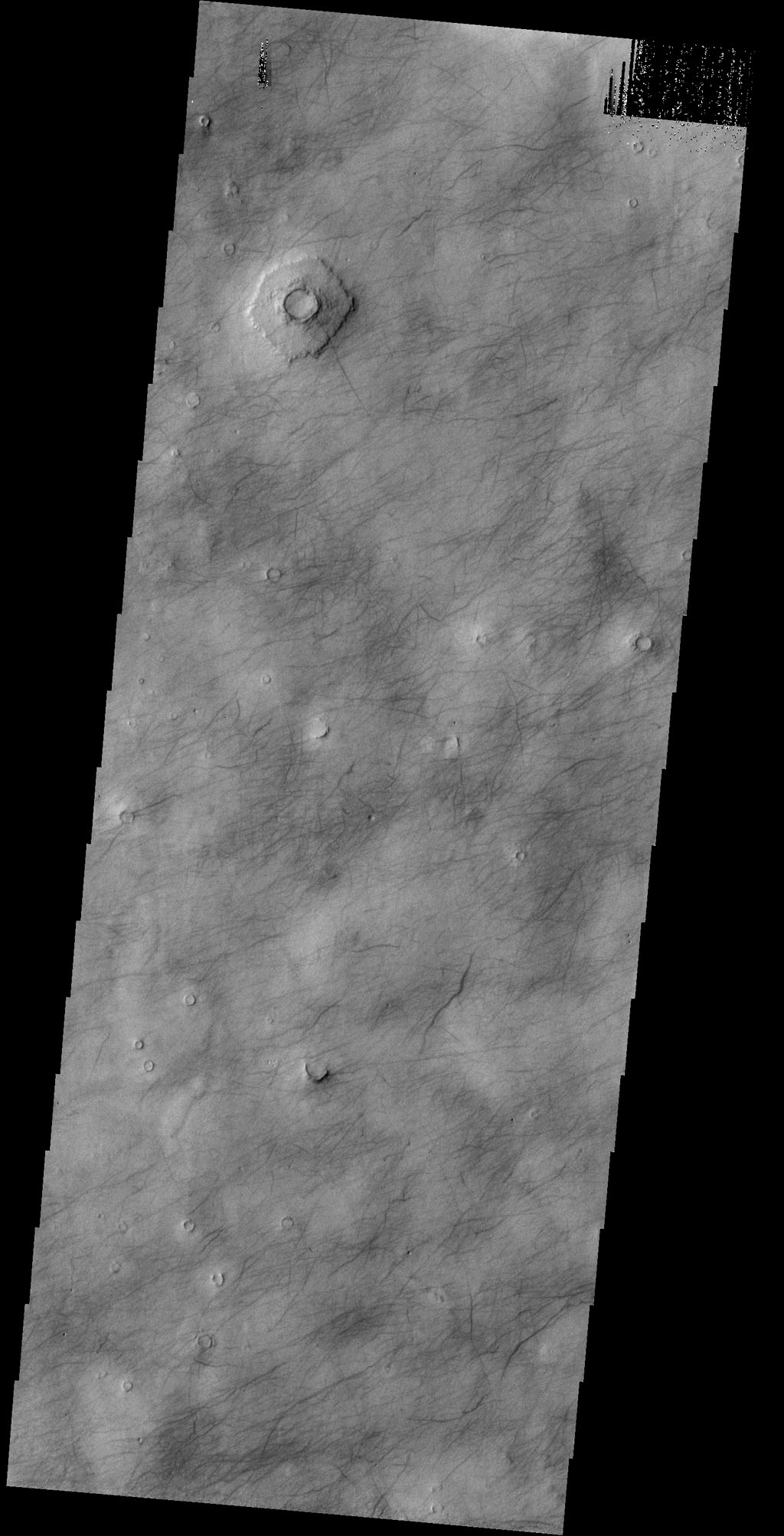 This image captured by NASA's 2001 Mars Odyssey spacecraft shows dust devil tracks covering most of the surface in this region of Utopia Planitia.