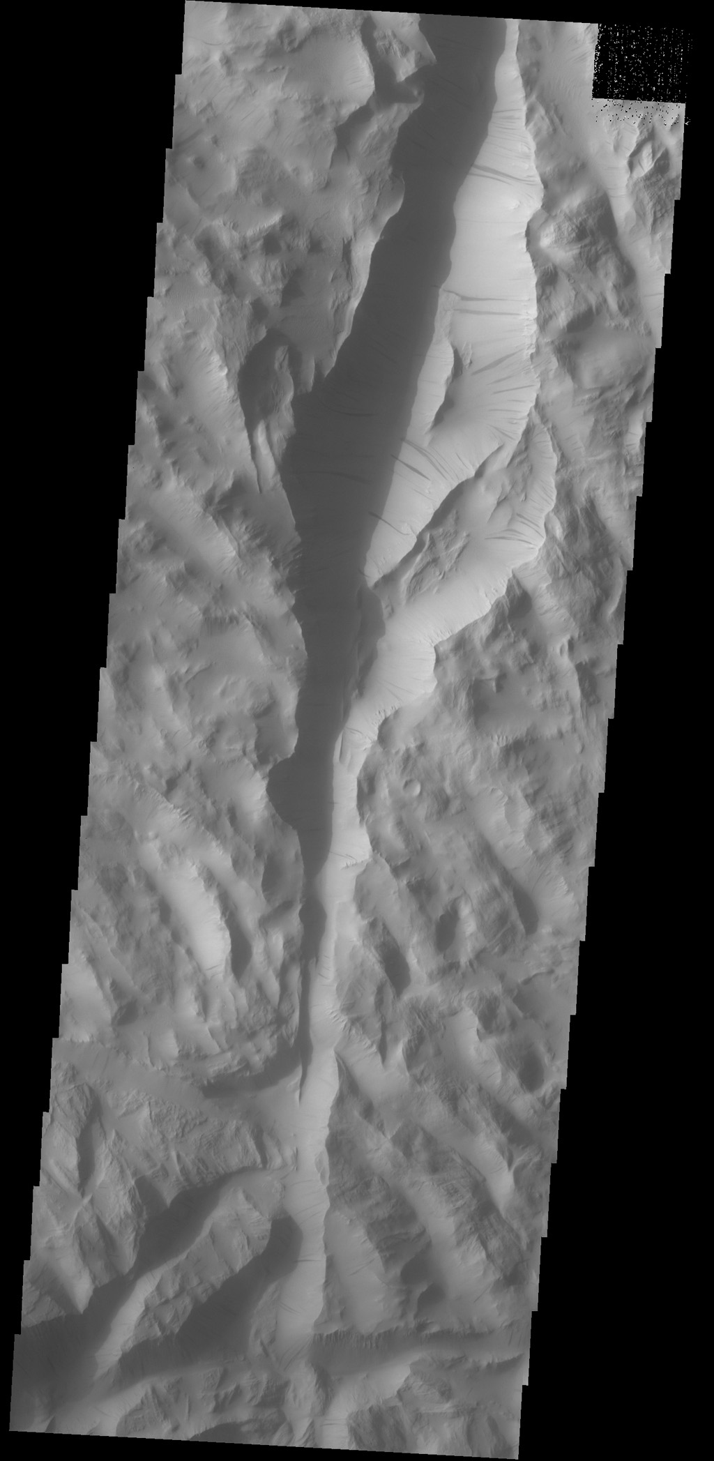 Dark slope streaks are a common feature on the cliff faces of Lycus Sulci as this image from NASA's 2001 Mars Odyssey spacecraft shows.