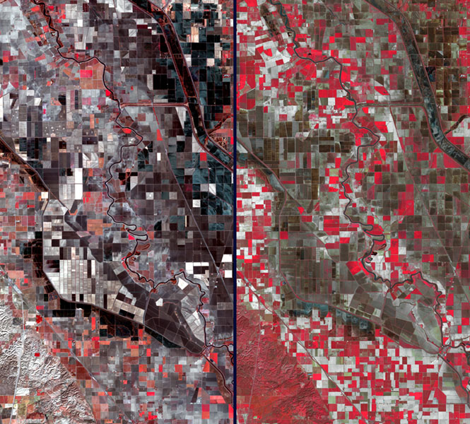 Stark effects of a California drought on agriculture can be clearly seen in these two February images acquired in 2014 and 2003 by NASA's Terra spacecraft.