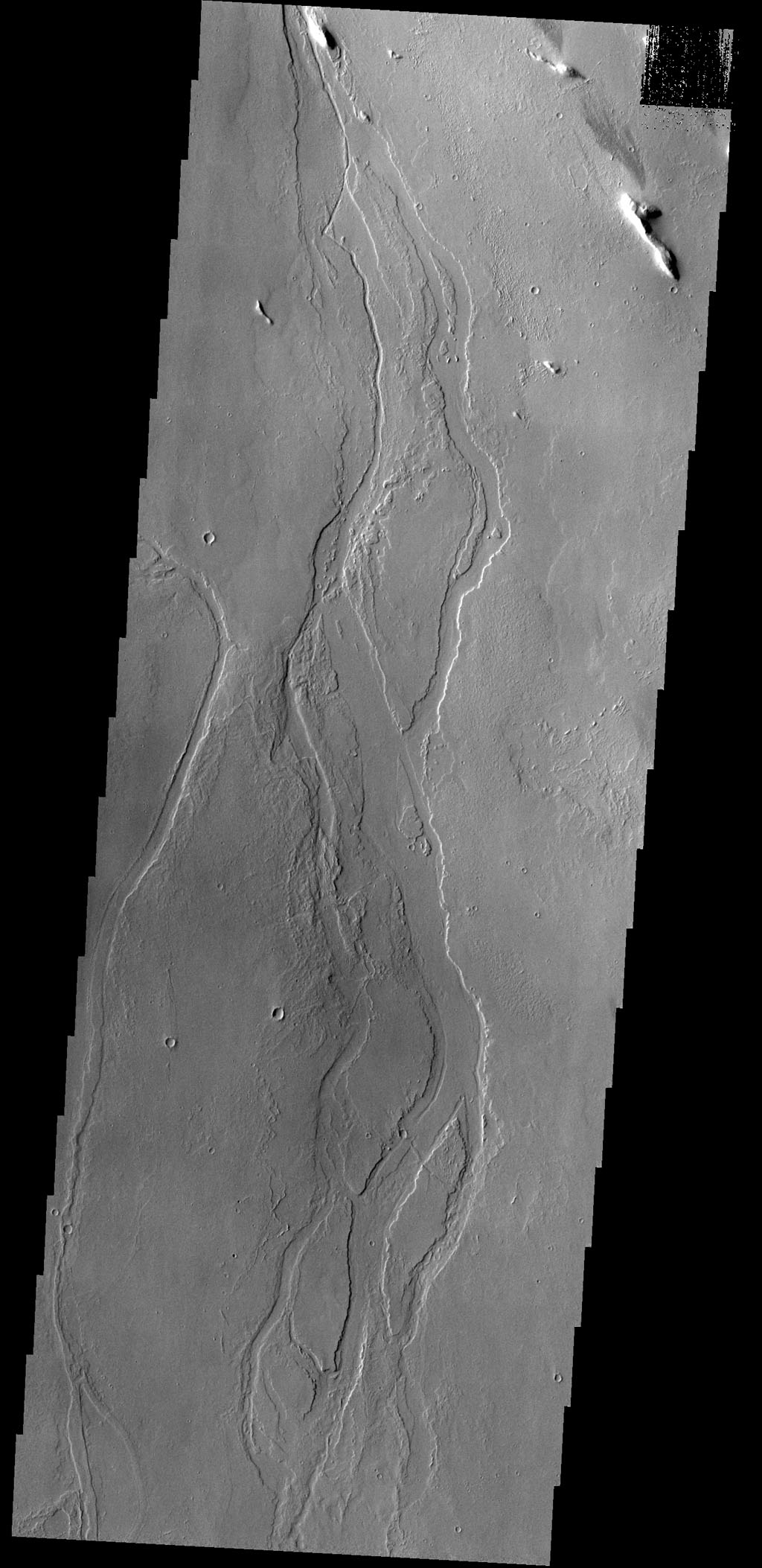 Given their location in the Tharsis volcanic complex, these channels were likely formed by the flow of lava rather than water in this image taken by NASA's 2001 Mars Odyssey spacecraft.