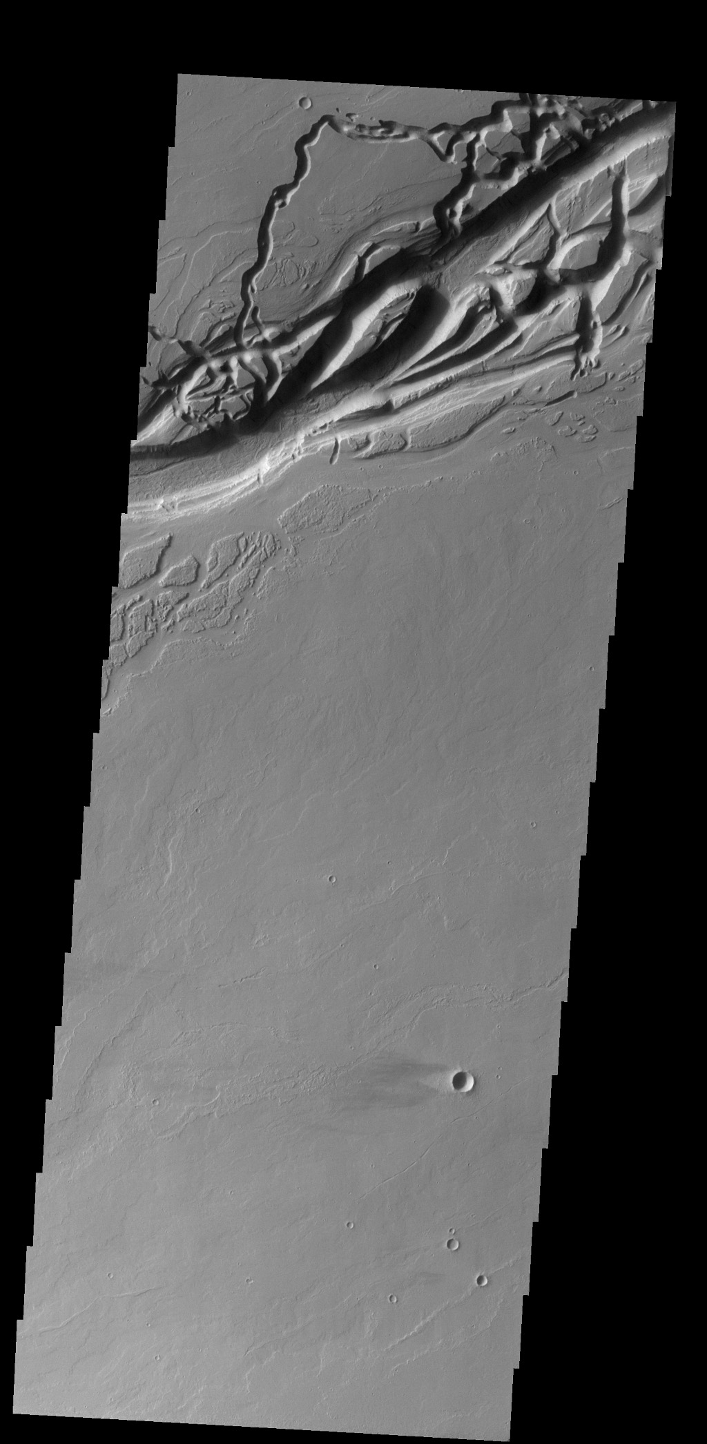 The complex channel in this image captured by NASA's 2001 Mars Odyssey spacecraft is part of Olympica Fossae, and was most likely formed by the flow of lava.