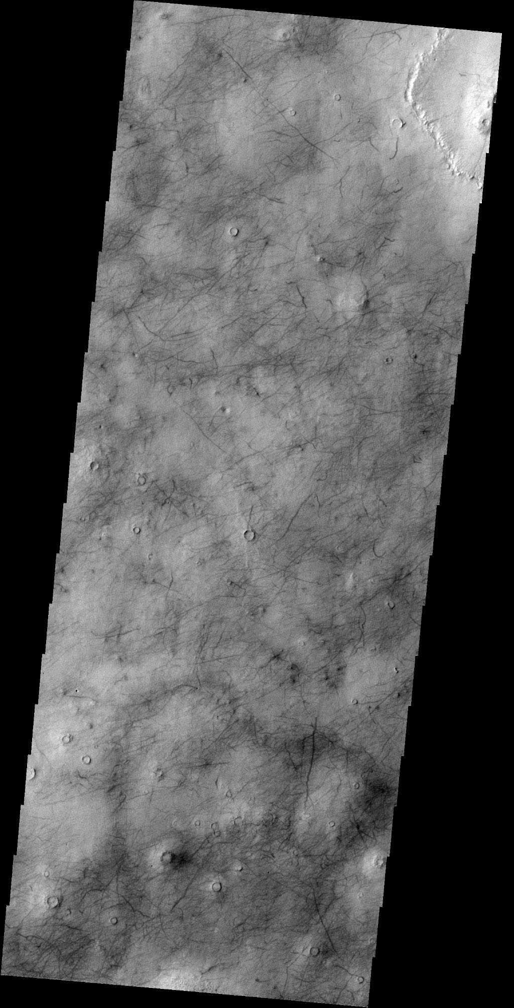 This image captured by NASA's 2001 Mars Odyssey spacecraft show the dark marks left behind after the passage of a dust devil cover this region of Utopia Planitia.