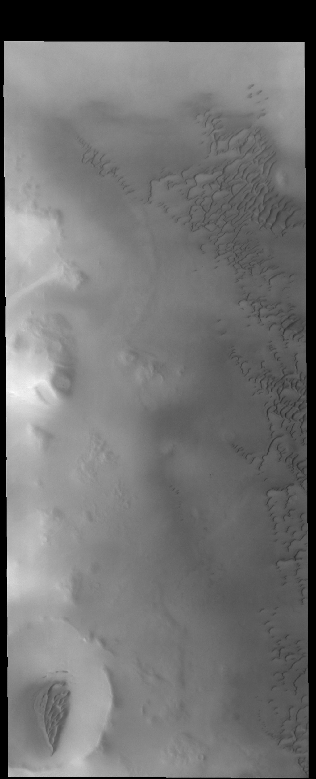 This image captured by NASA's 2001 Mars Odyssey spacecraft shows dunes on the margin of Olympia Undae, a large dune field near the north pole.