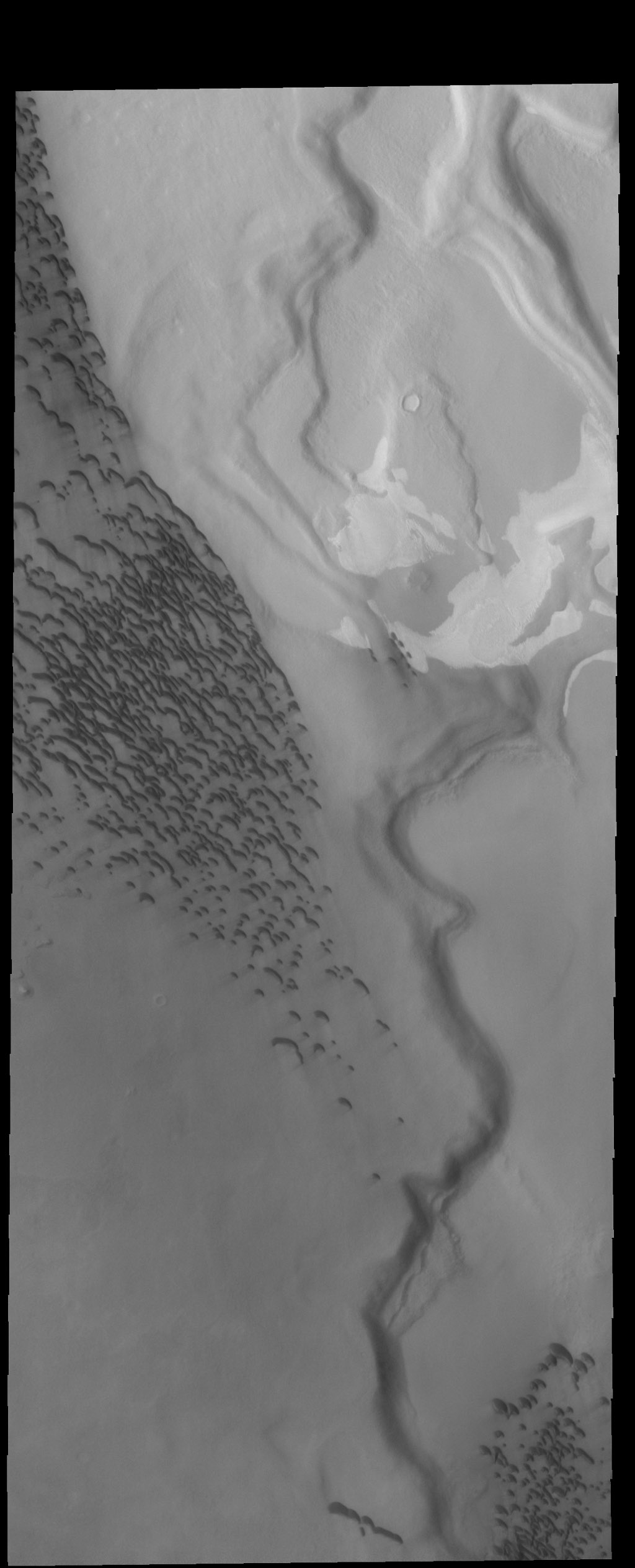 This image from NASA's 2001 Mars Odyssey spacecraft shows Hyperborei Cavi - the low regions on the right side of the image. Dunes are found both in the lows and on the higher region on the left side of the image.