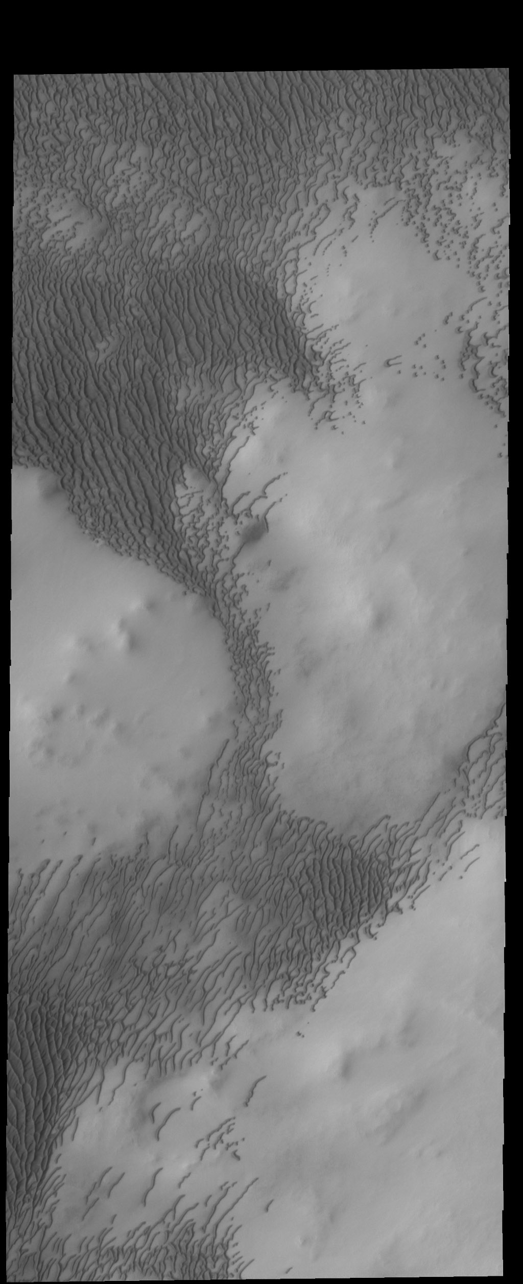 This image from NASA's 2001 Mars Odyssey spacecraft is part of Olympia Undae, but unlike yesterday's image, there is more topography in this region.