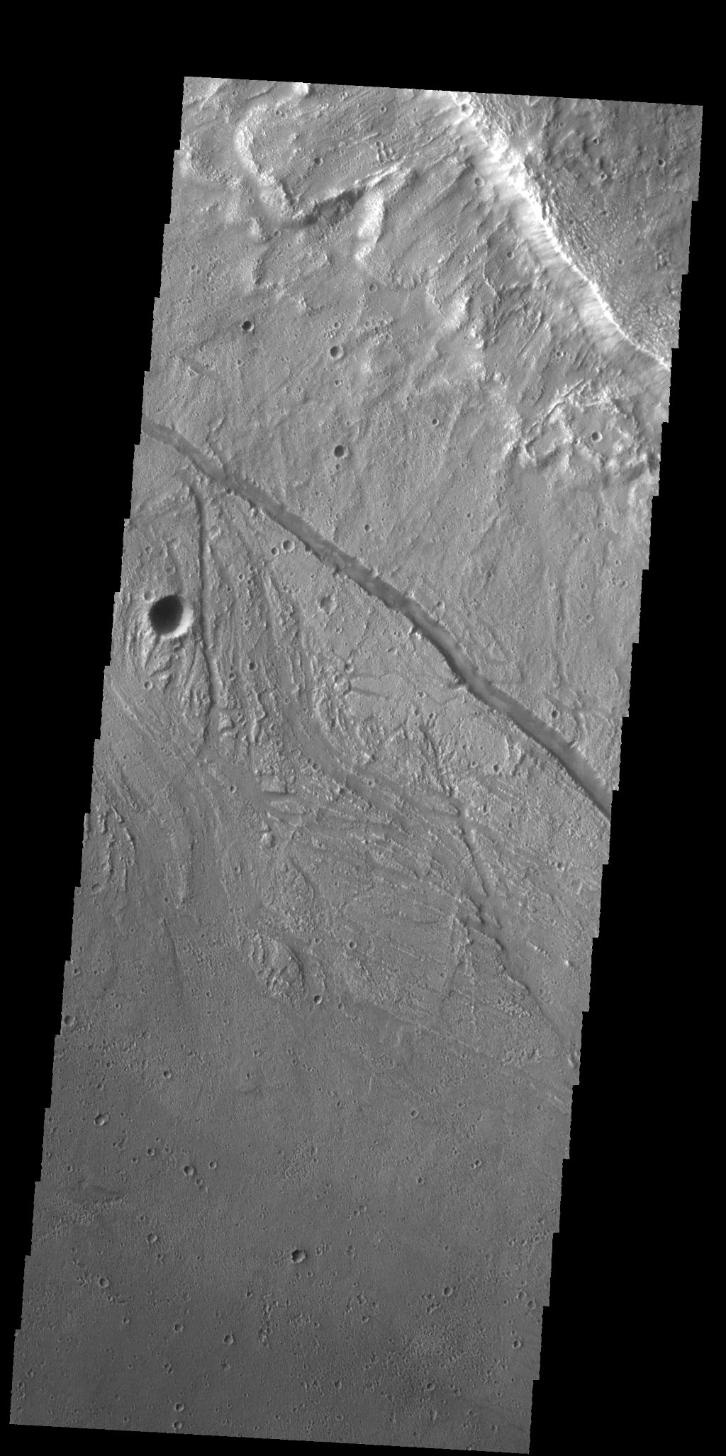The small channels in this image from NASA's 2001 Mars Odyssey spacecraft are located within the much larger Kasei Valles channel.