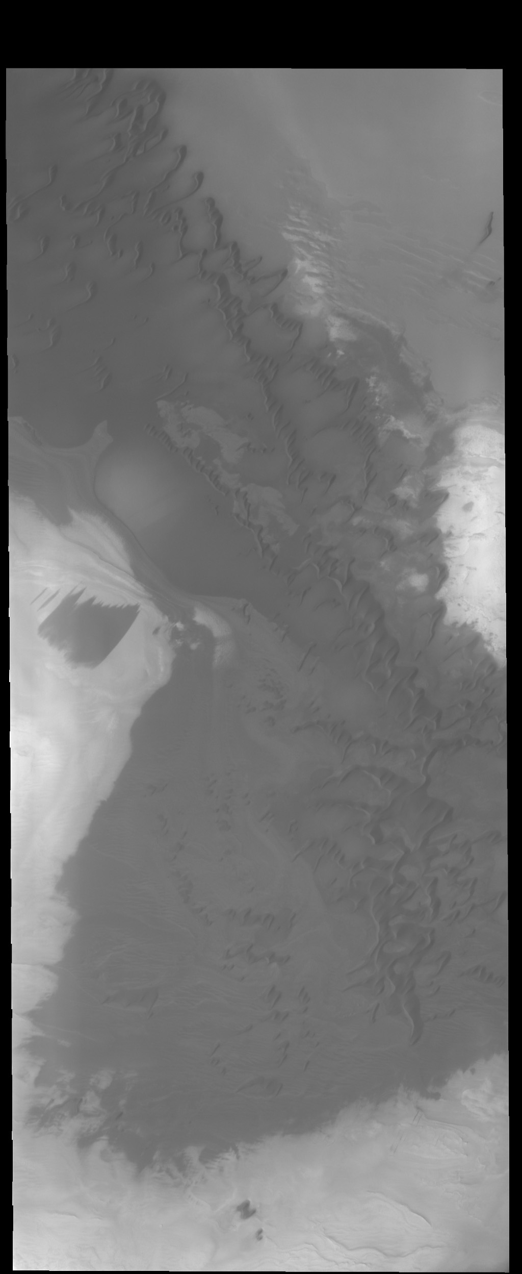 The dunes in this image captured by NASA's 2001 Mars Odyssey spacecraft are near the large dune field called Olympia Undae.