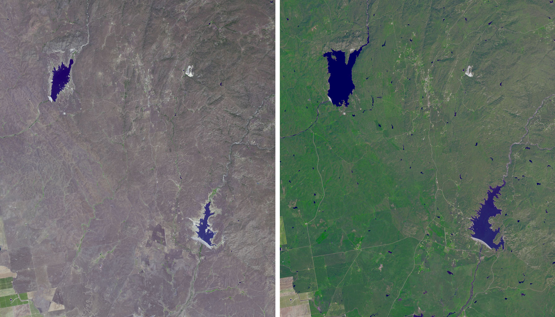 The effects of California's severe multiyear drought are seen in this pair of images acquired by NASA's Terra spacecraft of the area northeast of Madera, in the Sierra Nevada Moutains foothills between Yosemite National Park and the San Joaquin Valley