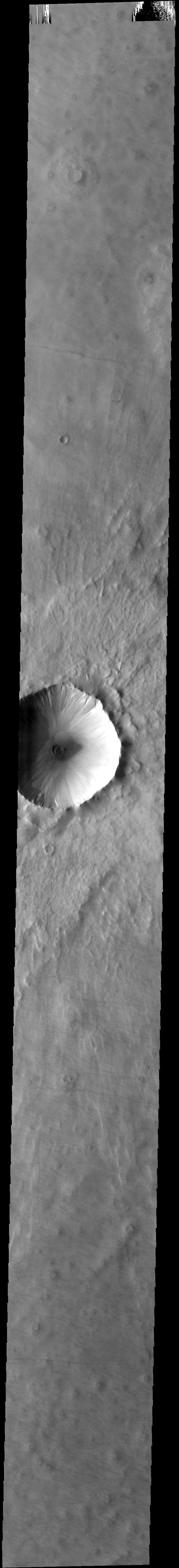 This image from NASA's 2001 Mars Odyssey spacecraft shows this unnamed crater has gullies along the inner rim and dunes on the crater floor.