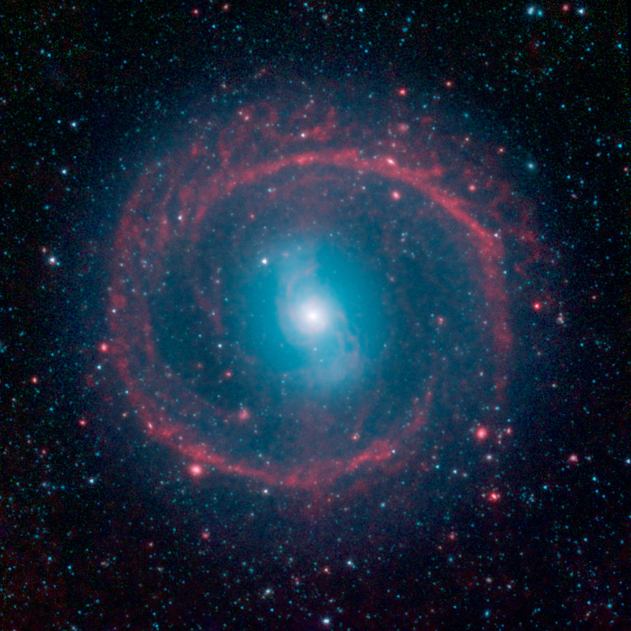 This image from NASA's Spitzer Space Telescope shows where the action is taking place in galaxy NGC 1291. The outer ring, colored red, is filled with new stars that are igniting and heating up dust that glows with infrared light.