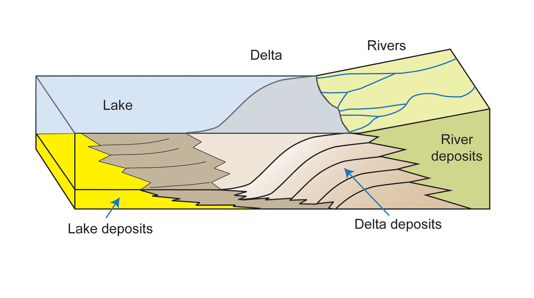 This diagram depicts rivers entering a lake. Where the water's flow decelerates, sediments drop out, and a delta forms, depositing a prism of sediment that tapers out toward the lake's interior.