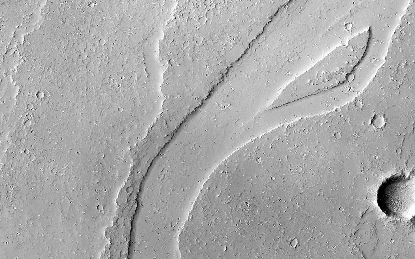 The Tharsis region of Mars is covered in vast lava flows, many with channels, as seen by NASA's Mars Reconnaissance Orbiter. Some channels, however, resemble features that may have been formed by water.