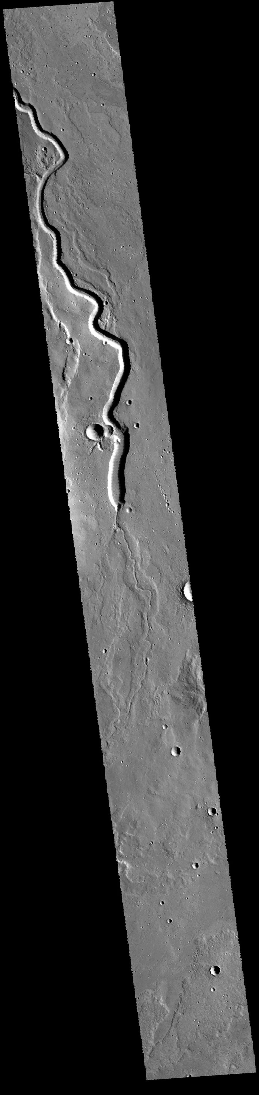 This image captured by NASA's 2001 Mars Odyssey spacecraft looks like a slithering snake on Mars.