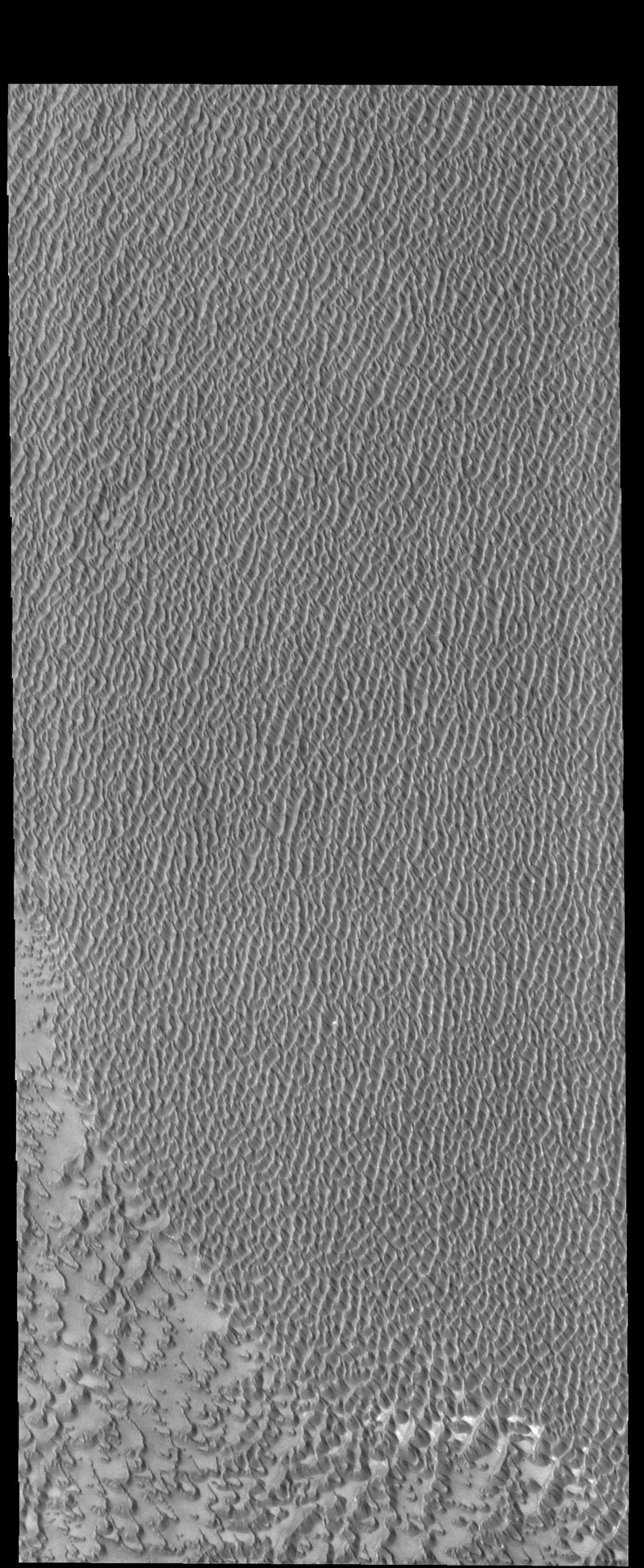 This image from NASA's 2001 Mars Odyssey spacecraft shows Siton Undae, a large dune field located in the northern plains near Escorial Crater on Mars. This image shows part of the center of the dune field.