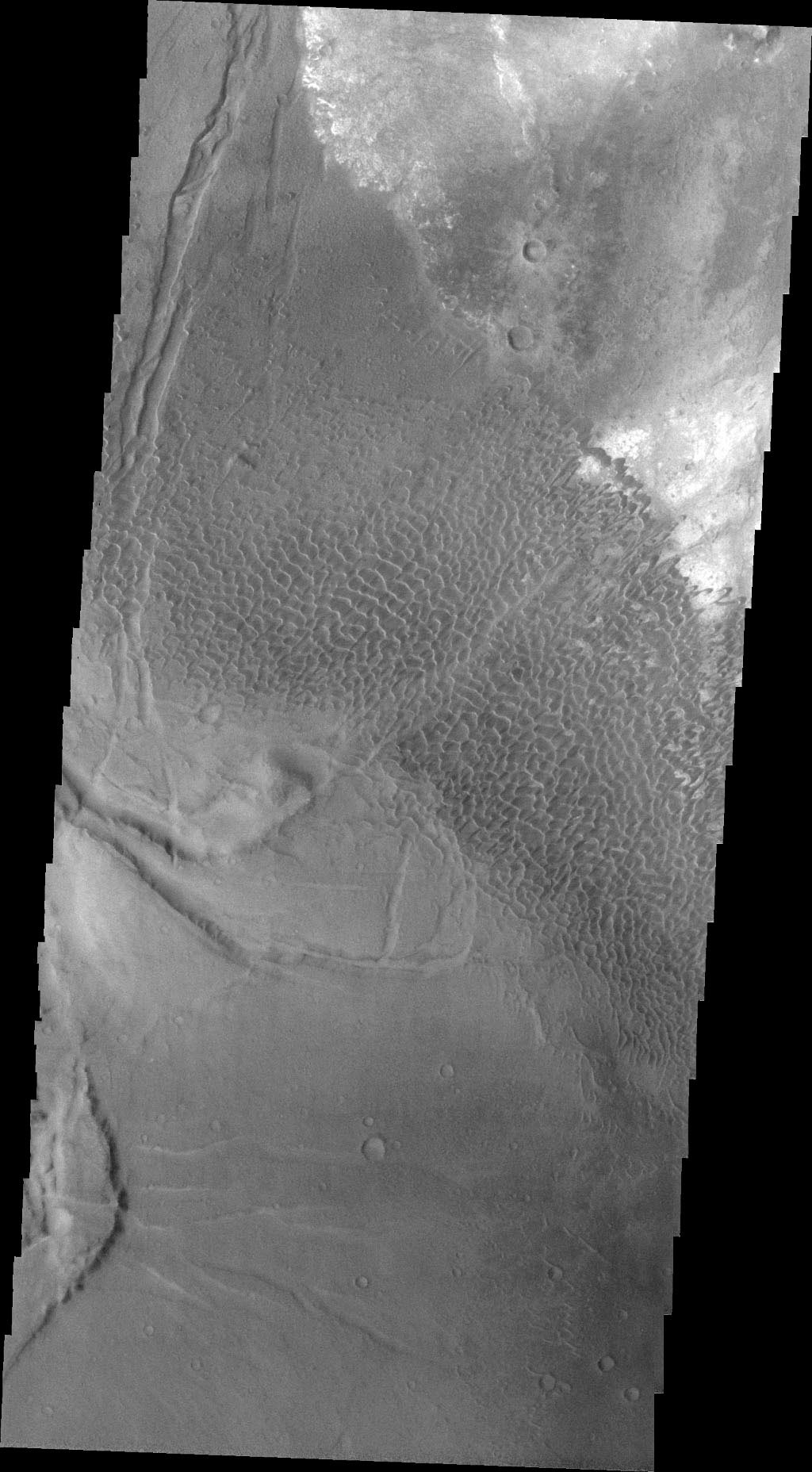 This image captured by NASA's 2001 Mars Odyssey spacecraft shows part of the Nili Patera dune field. The paterae are calderas on the volcanic complex called Syrtis Major Planum.