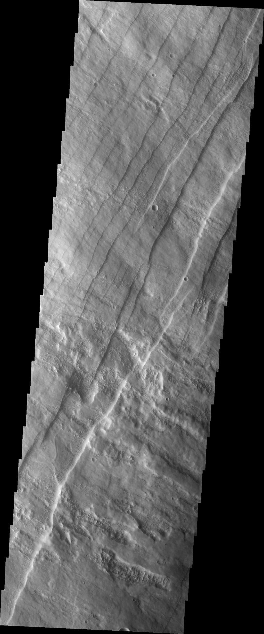This image captured by NASA's 2001 Mars Odyssey spacecraft shows part of the western flank of Pavonis Mons. The linear features are faults. Faulting usually includes change of elevation, where blocks of material slide down the fault.