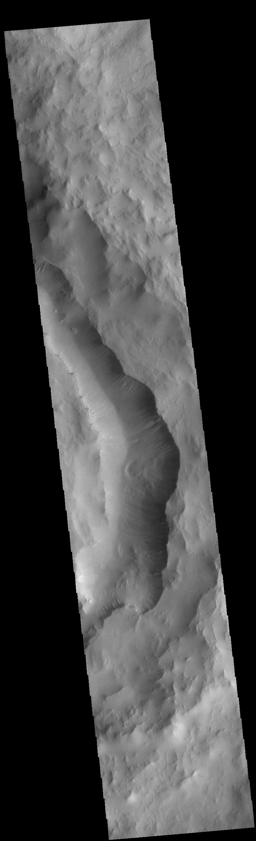 This image from NASAs Mars Odyssey shows part of the eastern side of Maunder Crater.