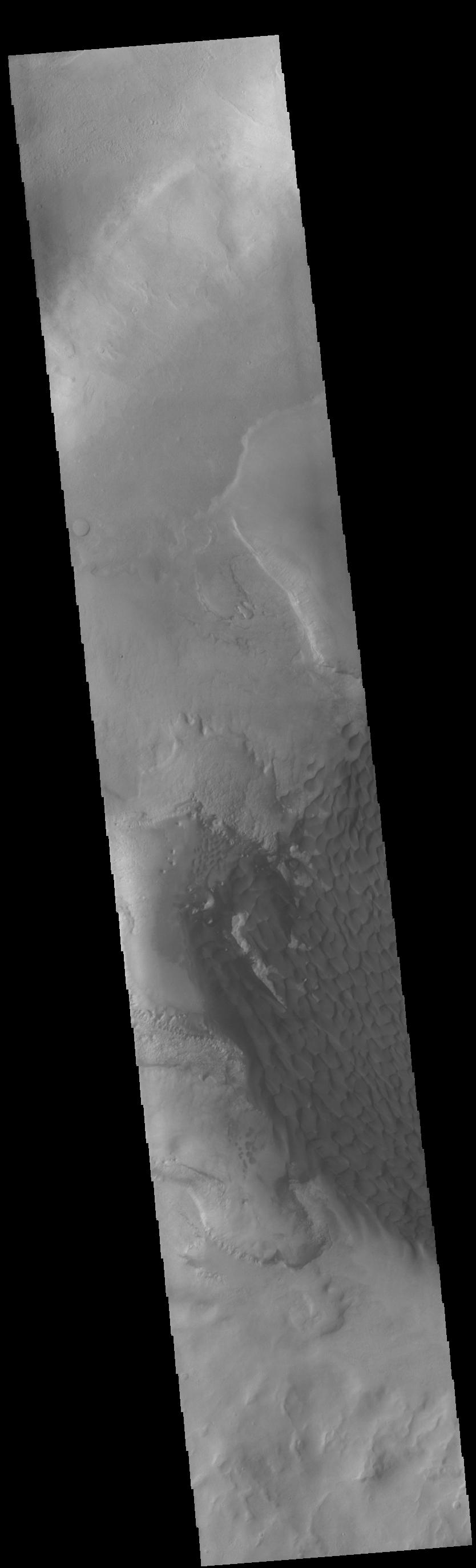 This image from NASAs Mars Odyssey shows part of the dune field on the floor and within the pits of Rabe Crater.