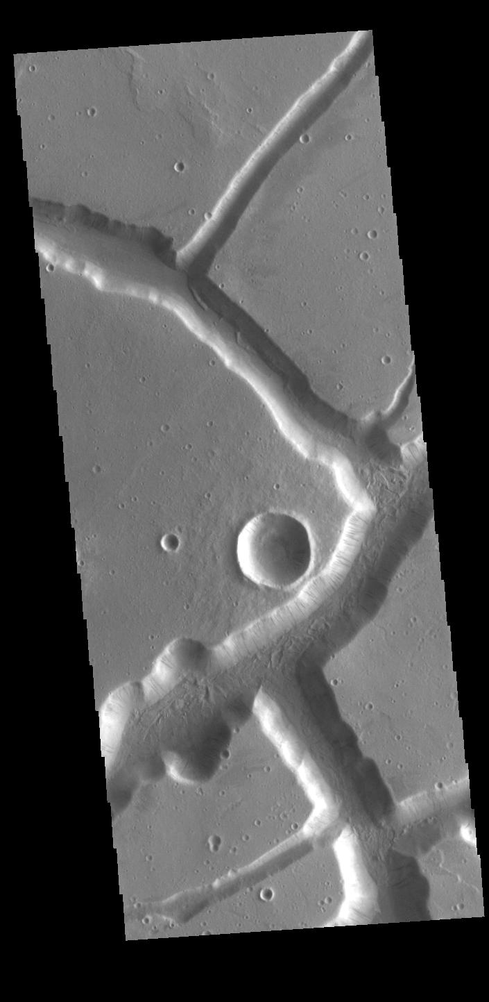 This image from NASAs Mars Odyssey shows linear depressions created by tectonic forces. The sides of the depression are faults.