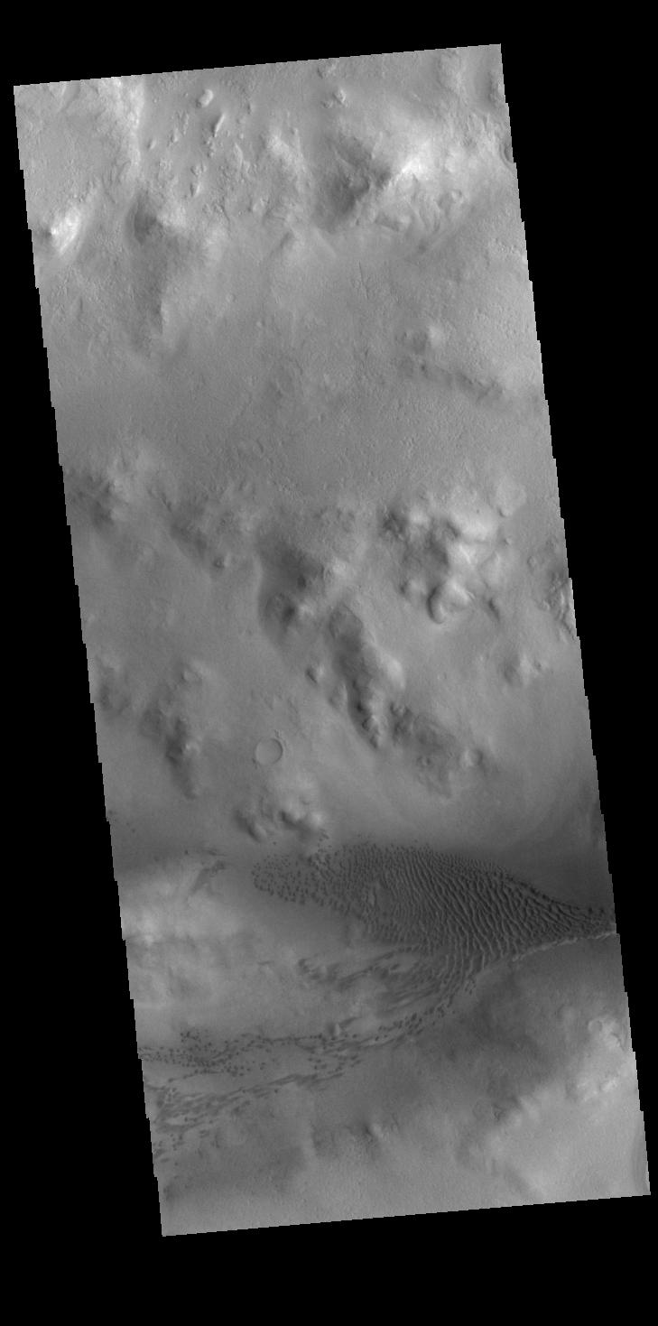 This image from NASAs Mars Odyssey shows part of the floor of Lyot Crater, including a field of dunes.