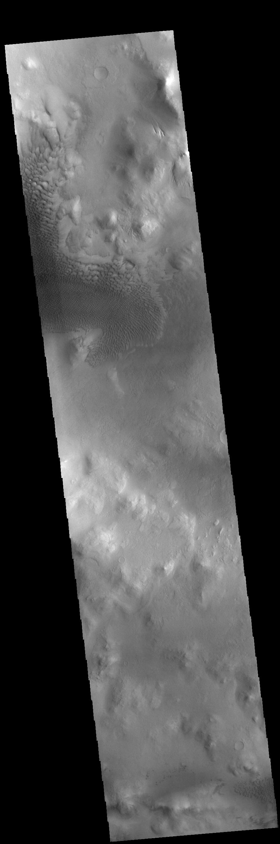 This image from NASAs Mars Odyssey shows part of Lyot Crater, including a large field of sand dunes on the crater floor.