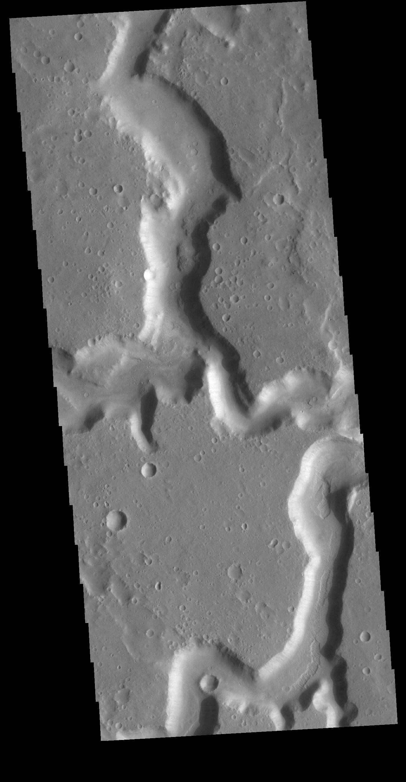 This image from NASAs Mars Odyssey shows the confluence of the two main channels of Nanedi Valles.
